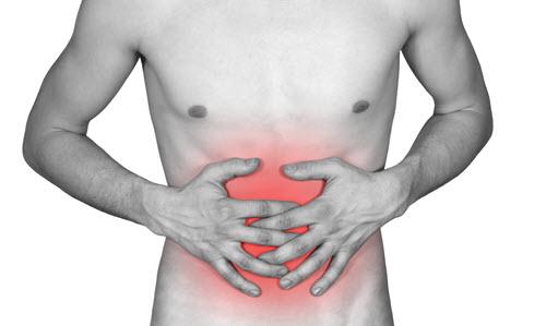 Magen und Darm